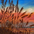 View Thru Seaoats Sold by Susan Dehlinger