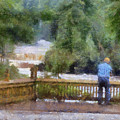 Viewing Tahquamenon Lower Falls Upper Peninsula Michigan Pa by Thomas Woolworth