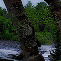 Viewing Tahquamenon Lower Falls Upper Peninsula Michigan Panorama 02 by Thomas Woolworth