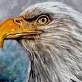 Vigilant Eagle by Patricia L Davidson