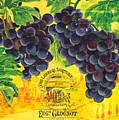 Vigne De Raisins by Debbie DeWitt