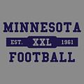 Vikings Retro Shirt by Joe Hamilton
