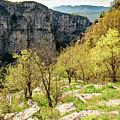 Vikos Gorge Landscape, Zagori, Greece by Global Light Photography - Nicole Leffer