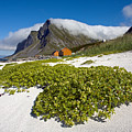 Vikten Beach With Green Grass, Mountains And Clouds by Aivar Mikko