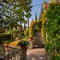 Villa Cipressi Gardens by Brenda Jacobs