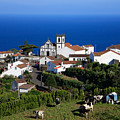 Village In The Azores by Gaspar Avila