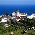 Village In The Azores by Gaspar Avila