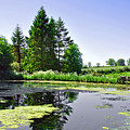 Village Pond At Tissington by Rod Johnson