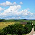 Village View by Tamar Mirianashvili