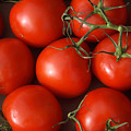 Vine Ripe Tomatoes Fine Art Food Photography by James BO Insogna