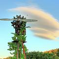 Vineyard Propeller by Travis Elder