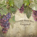 Vineyard Series - Chateau Pinot Noir Vineyards Sign by Audrey Jeanne Roberts