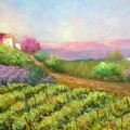 Vineyard Spring by Sally Seago