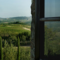 Vineyards Of Chianti Viewed by Todd Gipstein