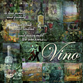 Vino by Evie Cook