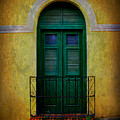 Vintage Arched Door by Perry Webster