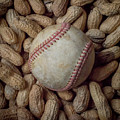Vintage Baseball And Peanuts Square by Terry DeLuco