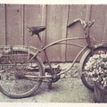 Vintage Bicycle by Jane Linders