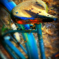 Vintage Bike by Perry Webster