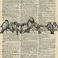Vintage Birds Dictionary Art by Anna W