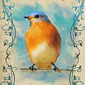 Vintage Bluebird With Flourishes by Jai Johnson