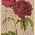 Vintage Burlap Floral 3 by Debbie DeWitt
