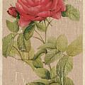Vintage Burlap Floral by Debbie DeWitt