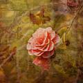 Vintage Camellia by Liz  Alderdice