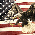 Vintage Flag With Eagle by Scott Carruthers