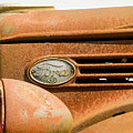 Vintage Ford Truck by Lou Cardinale