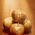 Vintage Fruits by Jorgo Photography - Wall Art Gallery