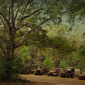 Vintage Harvey Trucks In Northwest Florida by Carla Parris