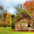 Vintage House Surrounded By Autumn Beauty Ap by Dan Carmichael