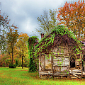 Vintage House Surrounded By Autumn Beauty by Dan Carmichael
