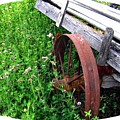 Vintage Irrigation Wagon by Will Borden