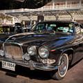 Vintage Jaguar by Adrian Evans