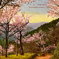 Vintage Japanese Art 14 by Hawaiian Legacy Archive - Printscapes