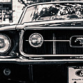 Vintage Mustang by Edmund Mazzola