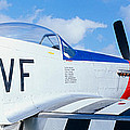 Vintage P51 Fighter Aircraft, Burnet by Panoramic Images