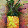Vintage Pineapple by Karen Nicholson