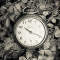 Vintage Pocket Watch Over Flowers by Edward Fielding
