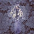 Vintage Portrait. Elegant Girl Wearing Lace Veil by Jorgo Photography - Wall Art Gallery