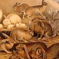 Vintage Rabbit Hutch by Natalie Ortiz