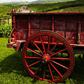 Vintage Red Wagon 2 by Marilyn Hunt