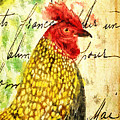 Vintage Rooster Portrait    by Tina LeCour