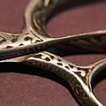 Vintage Scissors  by Scott Burd