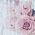 Vintage Shabby Chic Dusky Pink Roses On Blue Wood Effect Background by Shabby Chic and Vintage Art