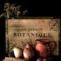 Vintage Still Life Food And Drink by Julie Palencia