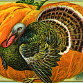 Vintage Thanksgiving Card by American School
