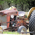 Vintage Tractor In Color by Denise Jenks